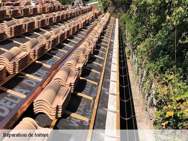 reparation toiture 06. Black Bedroom Furniture Sets. Home Design Ideas
